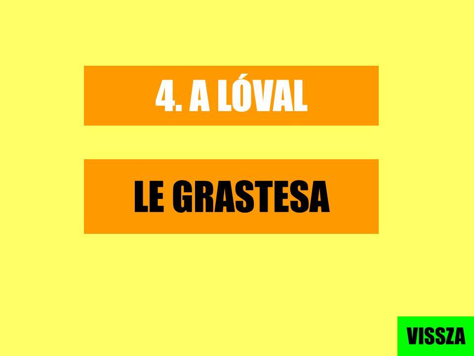 4. A LÓVAL LE GRASTESA VISSZA