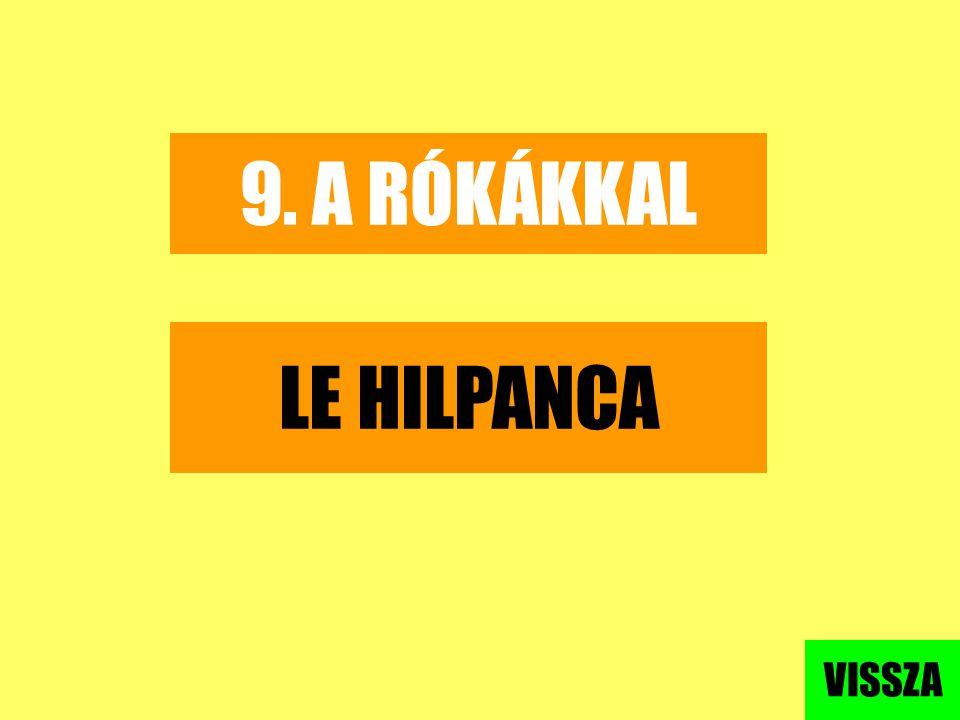 9. A RÓKÁKKAL LE HILPANCA VISSZA