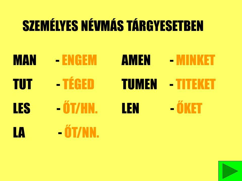 SZEMÉLYES NÉVMÁS TÁRGYESETBEN