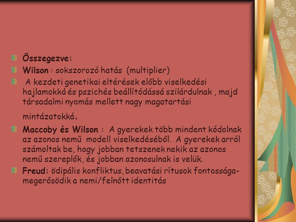 Összegezve: Wilson : sokszorozó hatás (multiplier)