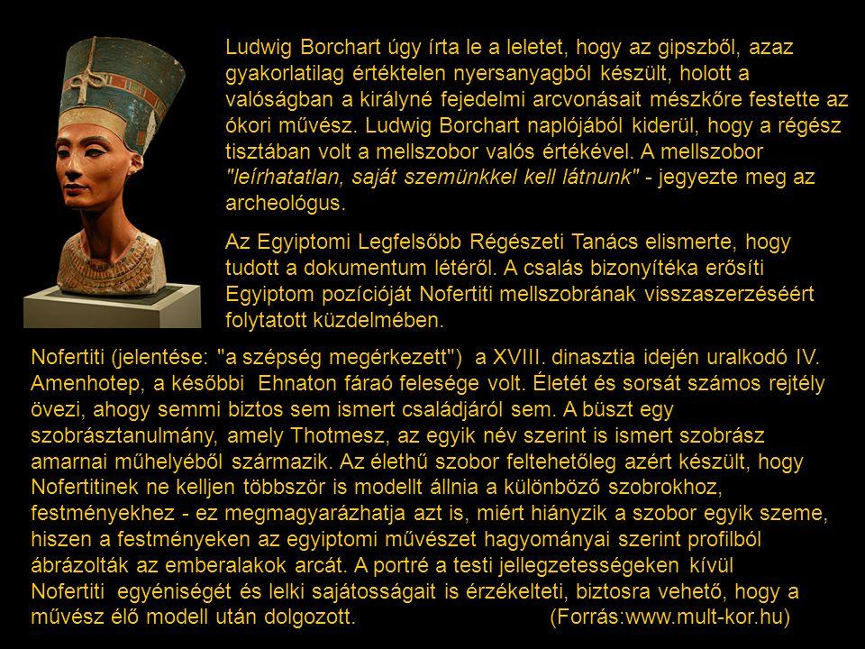 Ludwig Borchart úgy írta le a leletet, hogy az gipszből, azaz gyakorlatilag értéktelen nyersanyagból készült, holott a valóságban a királyné fejedelmi arcvonásait mészkőre festette az ókori művész. Ludwig Borchart naplójából kiderül, hogy a régész tisztában volt a mellszobor valós értékével. A mellszobor leírhatatlan, saját szemünkkel kell látnunk - jegyezte meg az archeológus.