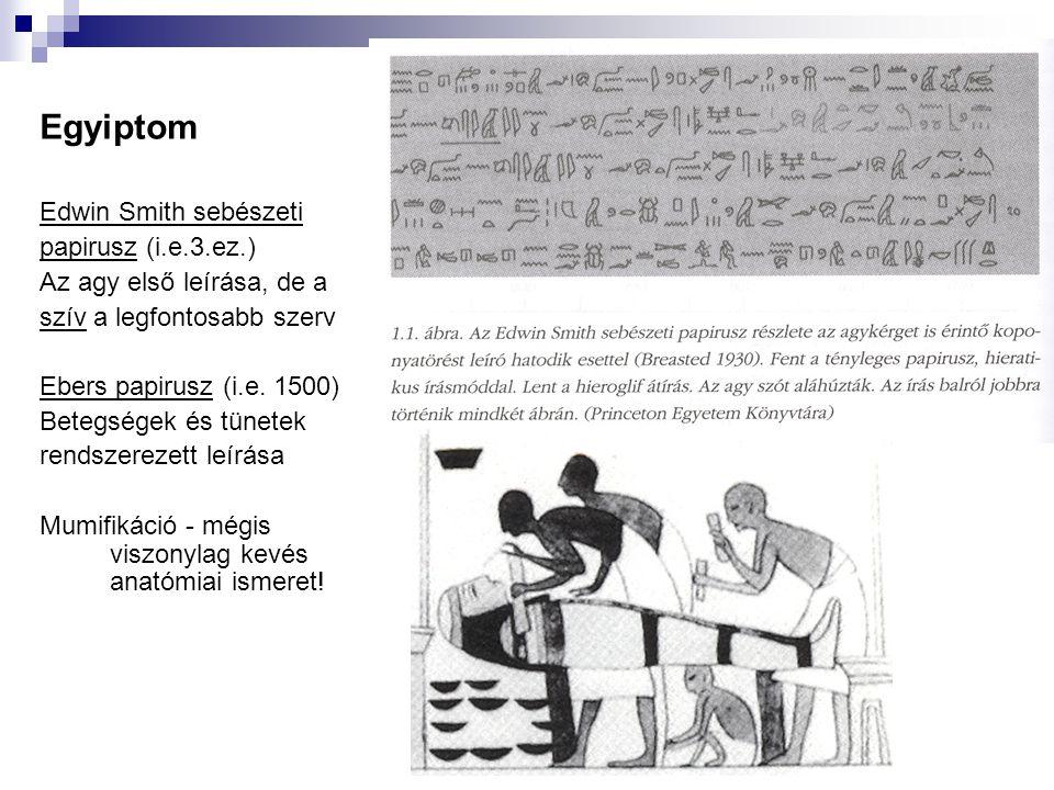 Egyiptom Edwin Smith sebészeti papirusz (i.e.3.ez.)