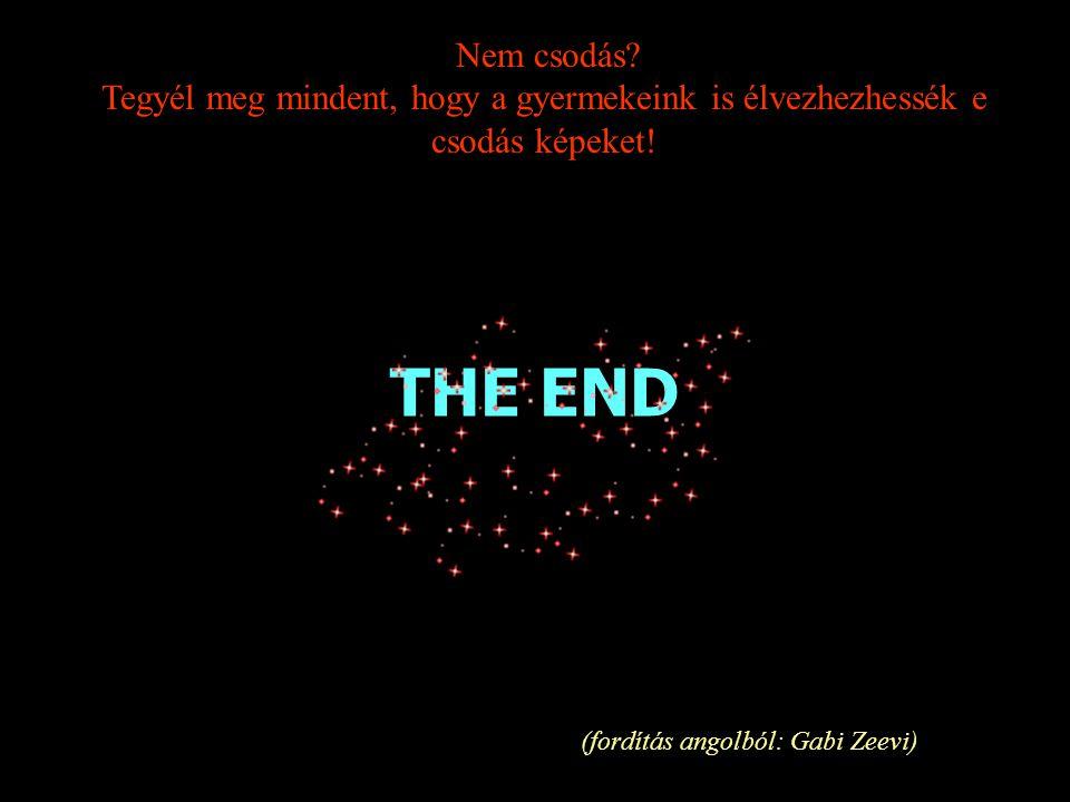 (fordítás angolból: Gabi Zeevi)