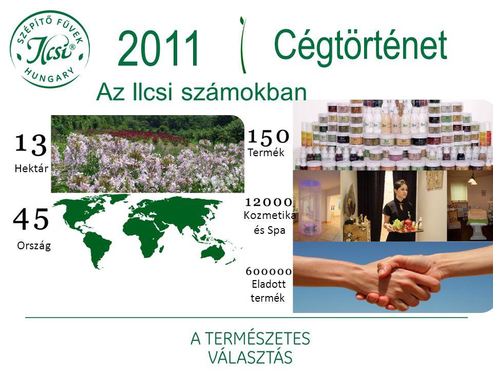 2011 Cégtörténet Az Ilcsi számokban Termék Hektár Kozmetika és Spa