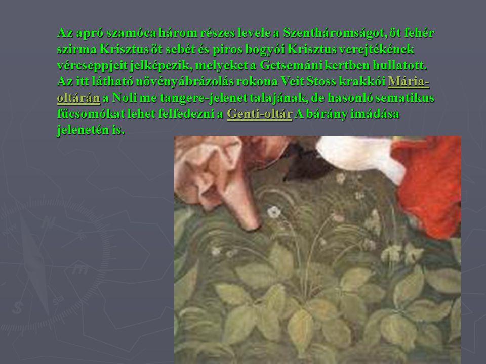 Az apró szamóca három részes levele a Szentháromságot, öt fehér szirma Krisztus öt sebét és piros bogyói Krisztus verejtékének vércseppjeit jelképezik, melyeket a Getsemáni kertben hullatott.