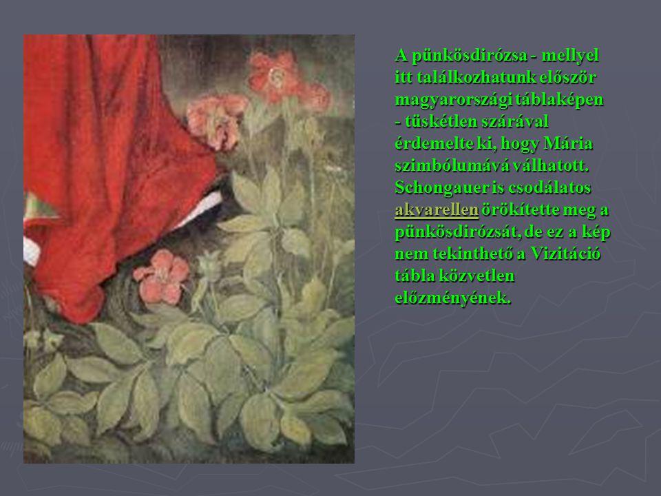 A pünkösdirózsa - mellyel itt találkozhatunk először magyarországi táblaképen - tüskétlen szárával érdemelte ki, hogy Mária szimbólumává válhatott.