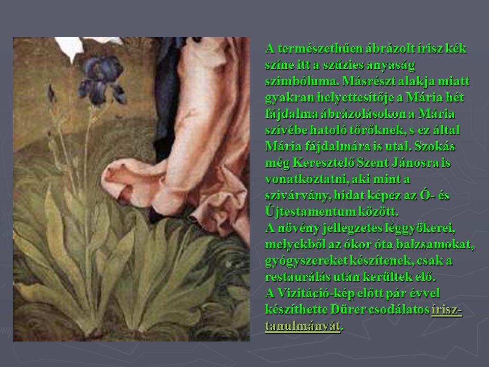 A természethűen ábrázolt írisz kék színe itt a szűzies anyaság szimbóluma. Másrészt alakja miatt gyakran helyettesítője a Mária hét fájdalma ábrázolásokon a Mária szívébe hatoló tőrőknek, s ez által Mária fájdalmára is utal. Szokás még Keresztelő Szent Jánosra is vonatkoztatni, aki mint a szivárvány, hidat képez az Ó- és Újtestamentum között.