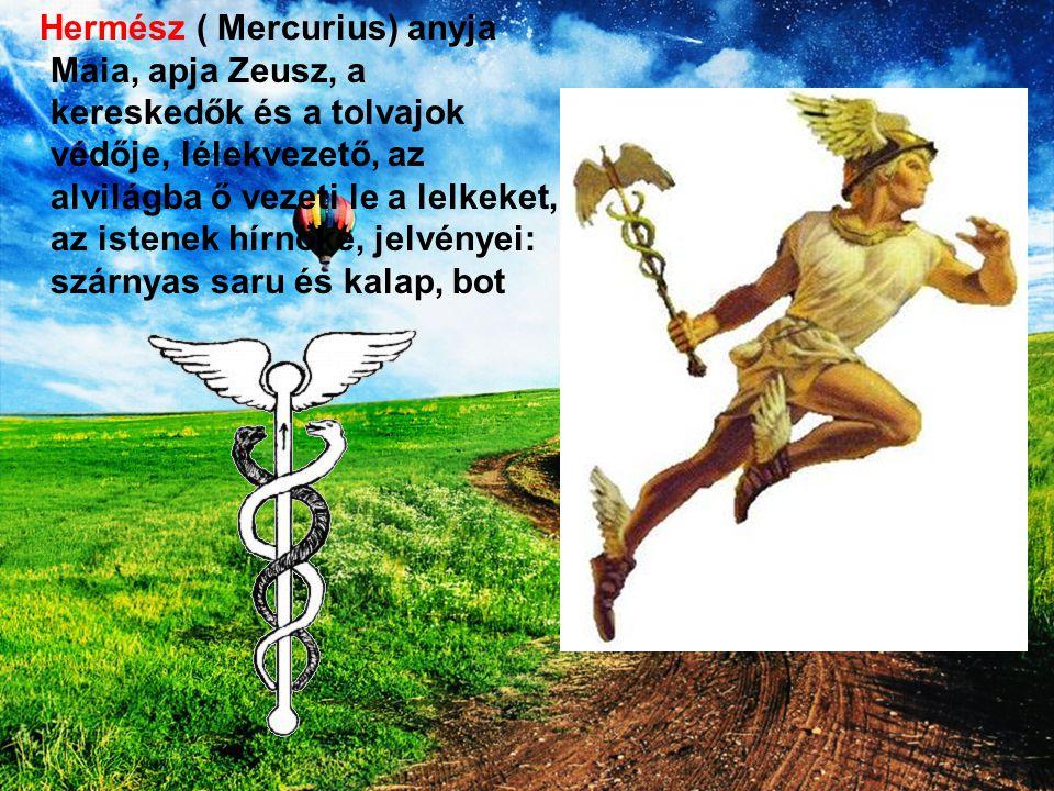 Hermész ( Mercurius) anyja Maia, apja Zeusz, a kereskedők és a tolvajok védője, lélekvezető, az alvilágba ő vezeti le a lelkeket, az istenek hírnöke, jelvényei: szárnyas saru és kalap, bot