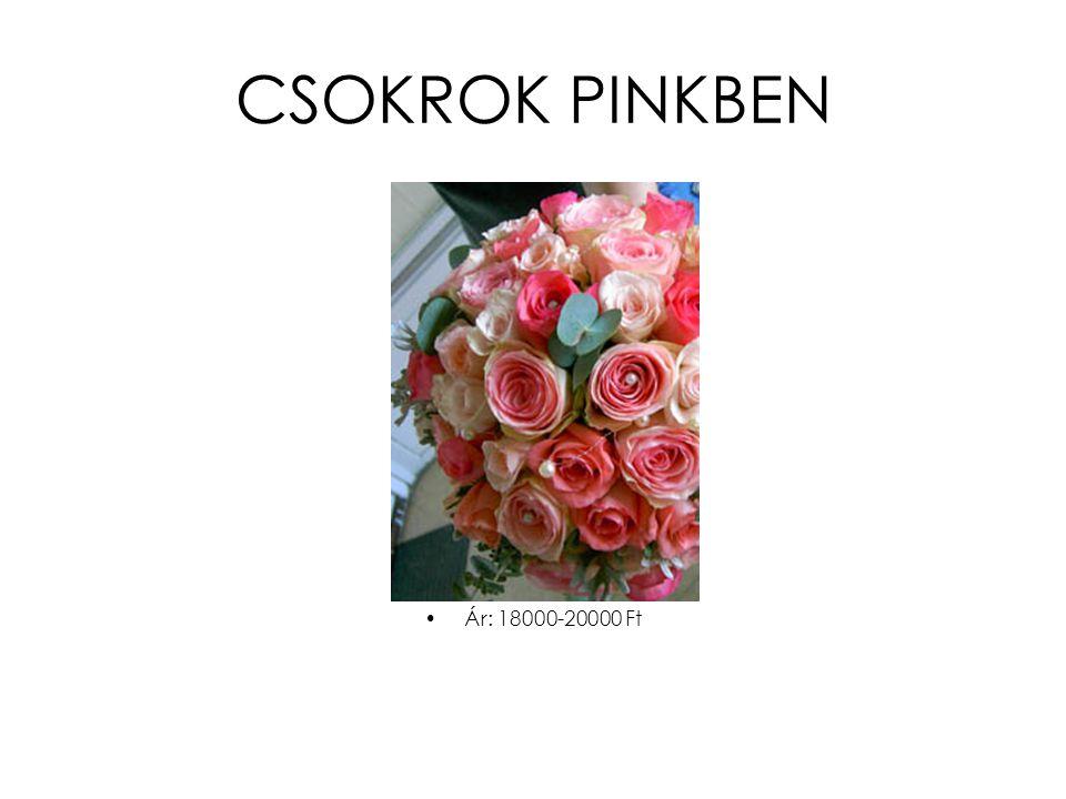 CSOKROK PINKBEN Ár: 18000-20000 Ft