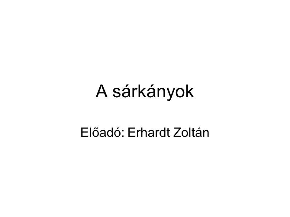 Előadó: Erhardt Zoltán