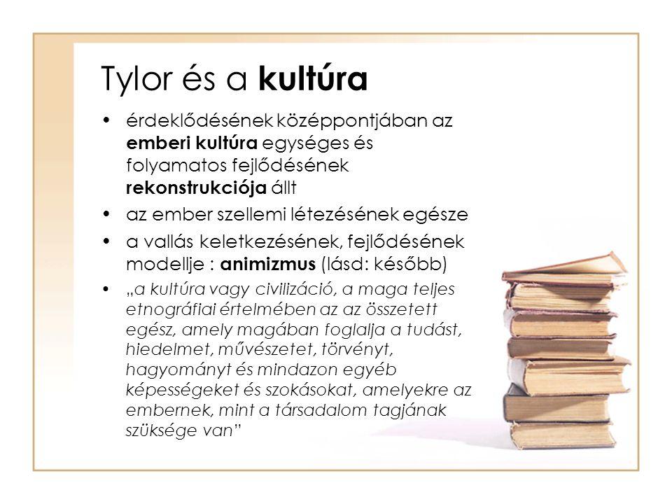 Tylor és a kultúra érdeklődésének középpontjában az emberi kultúra egységes és folyamatos fejlődésének rekonstrukciója állt.