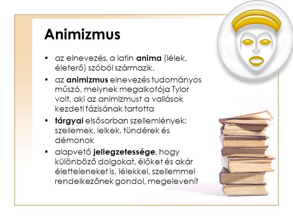Animizmus az elnevezés, a latin anima (lélek, életerő) szóból származik.