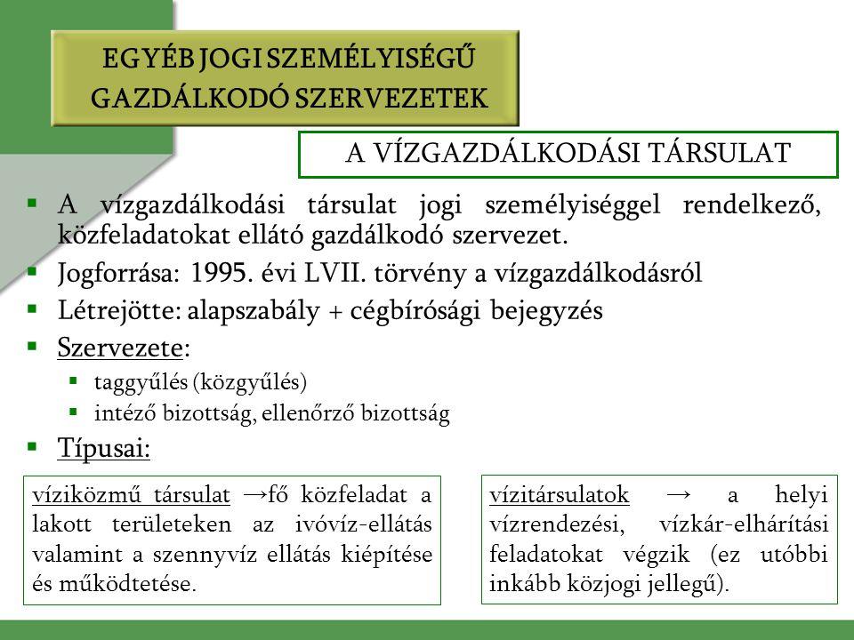 EGYÉB JOGI SZEMÉLYISÉGŰ GAZDÁLKODÓ SZERVEZETEK