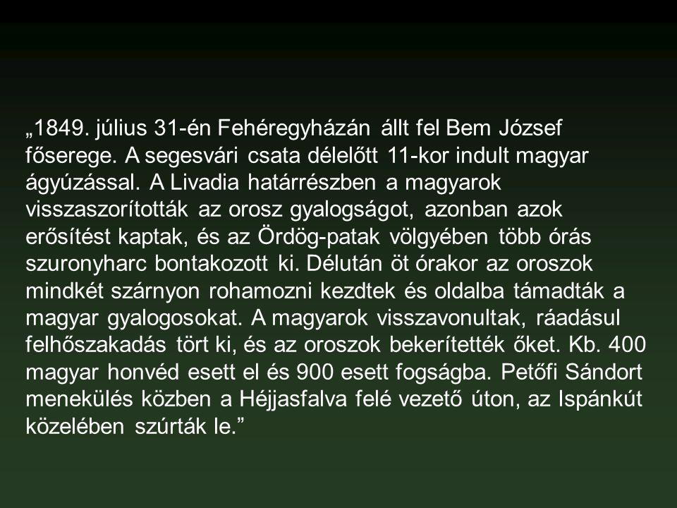 """""""1849. július 31-én Fehéregyházán állt fel Bem József főserege"""