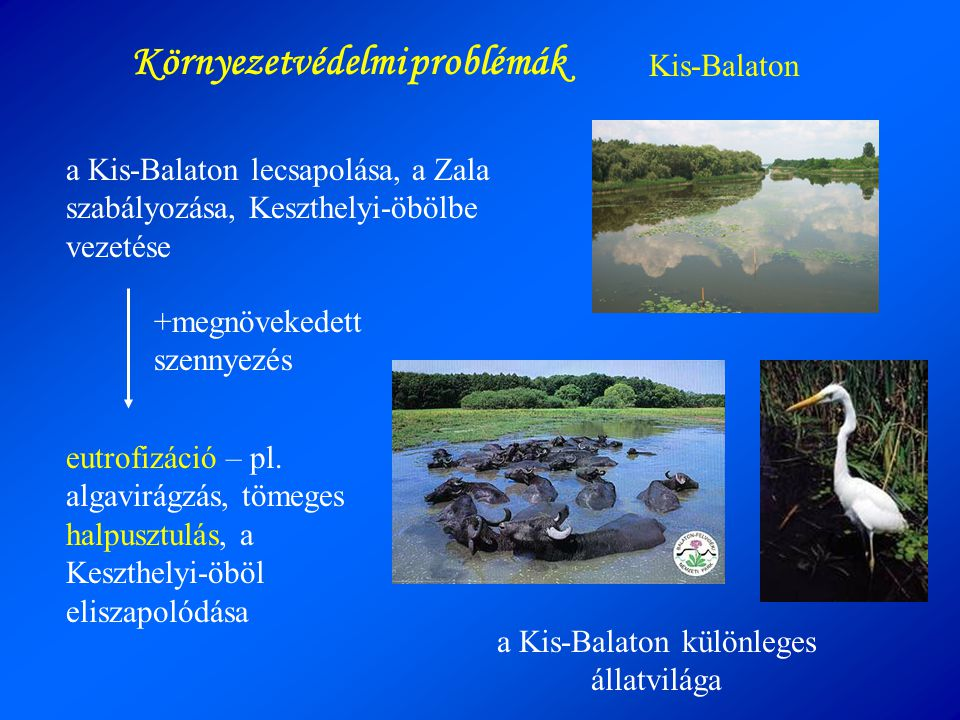 Környezetvédelmi problémák