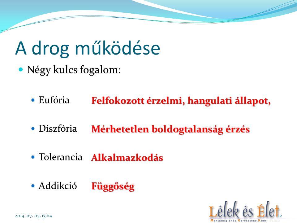 A drog működése Négy kulcs fogalom: Eufória Diszfória