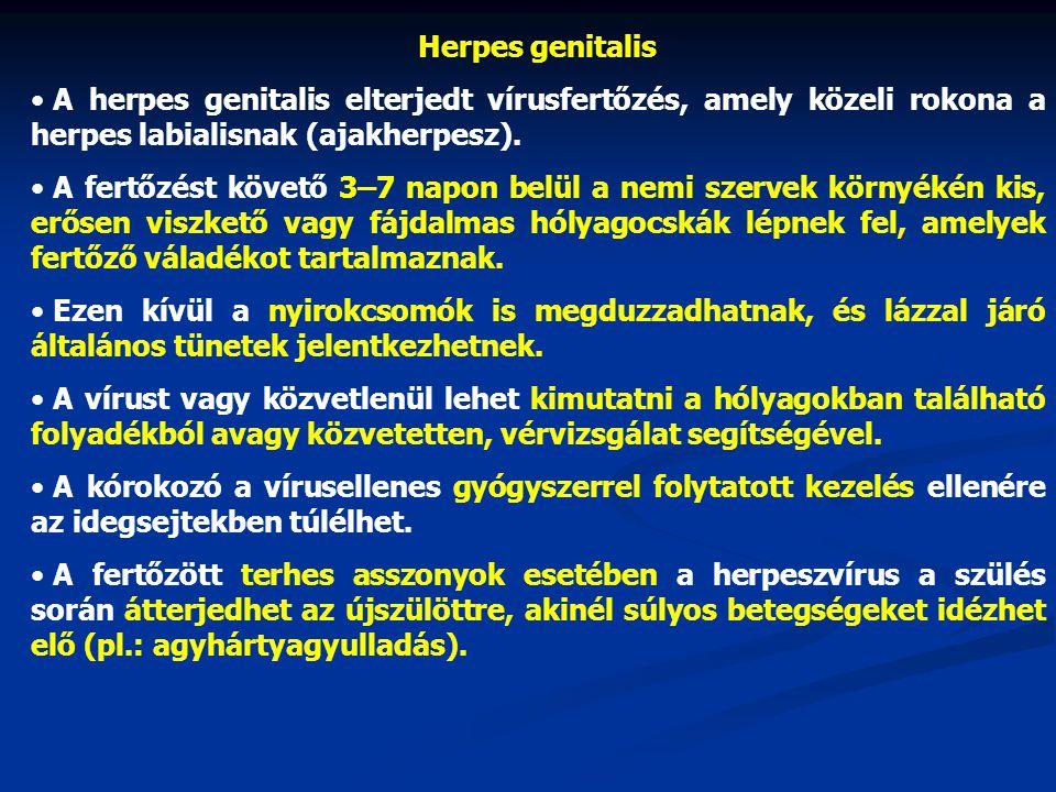 Herpes genitalis A herpes genitalis elterjedt vírusfertőzés, amely közeli rokona a herpes labialisnak (ajakherpesz).