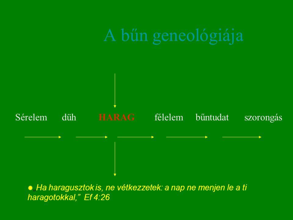 A bűn geneológiája Sérelem düh HARAG félelem bűntudat szorongás