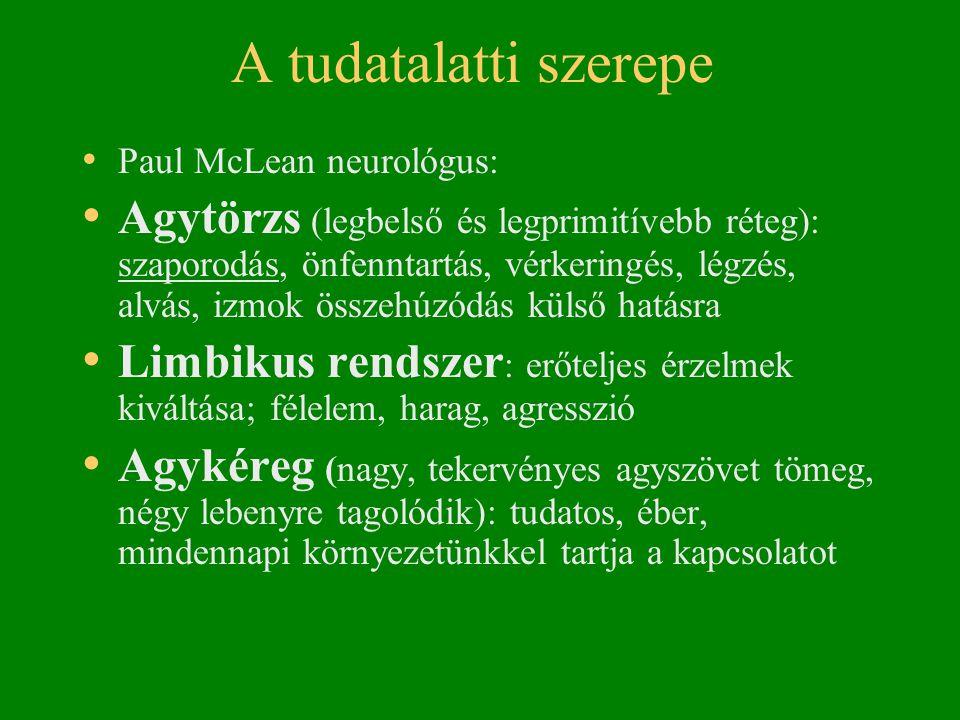 A tudatalatti szerepe Paul McLean neurológus: