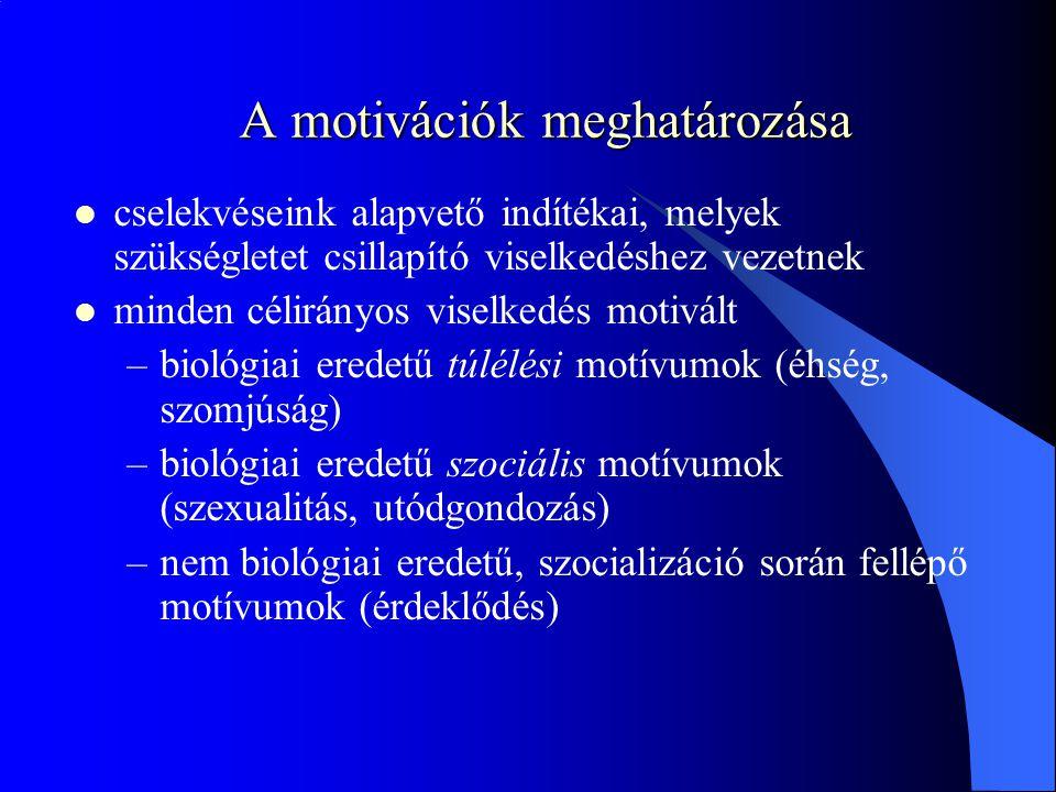 A motivációk meghatározása