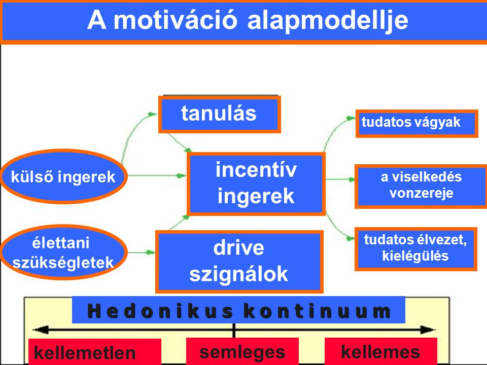 A motiváció alapmodellje