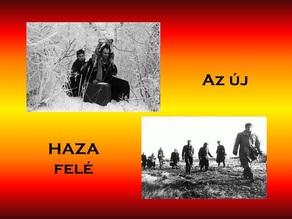 Az új HAZA felé