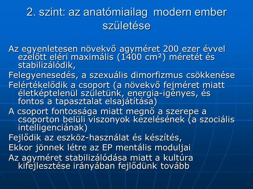 2. szint: az anatómiailag modern ember születése