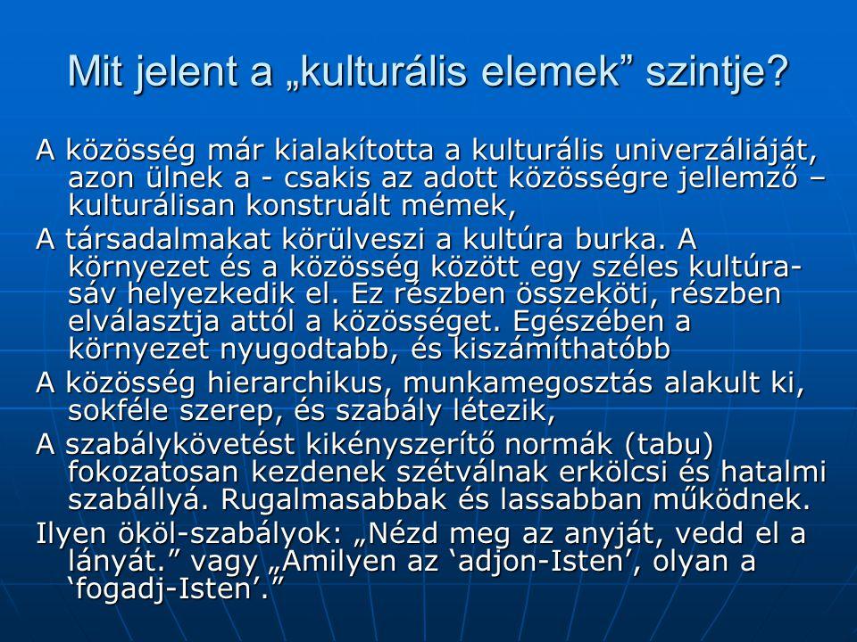 """Mit jelent a """"kulturális elemek szintje"""