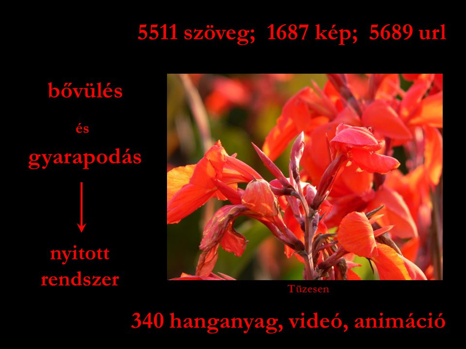 340 hanganyag, videó, animáció