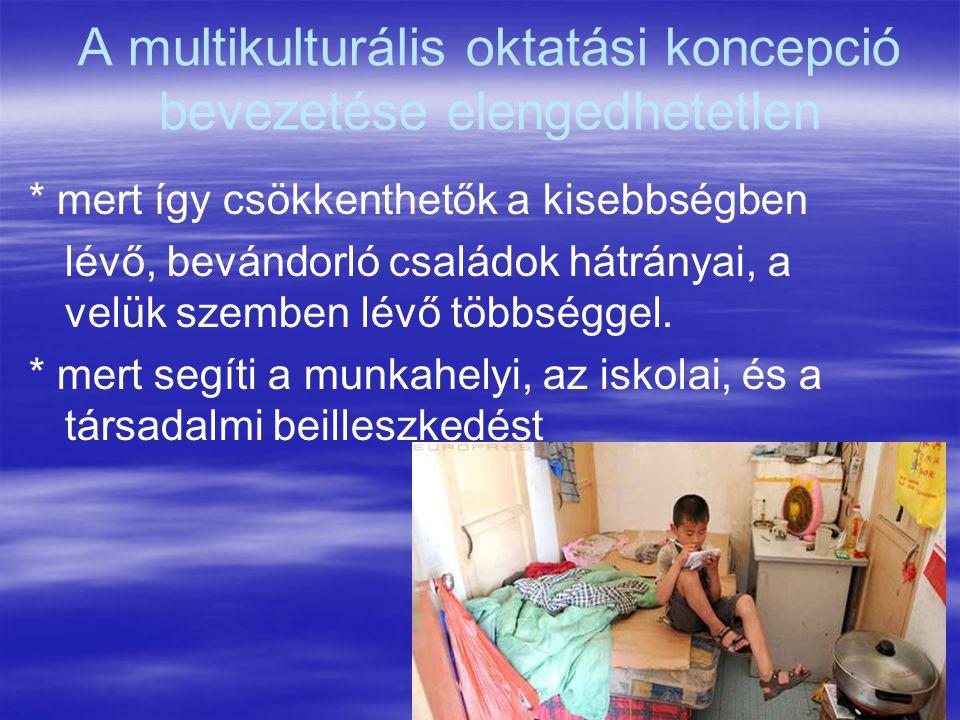 A multikulturális oktatási koncepció bevezetése elengedhetetlen
