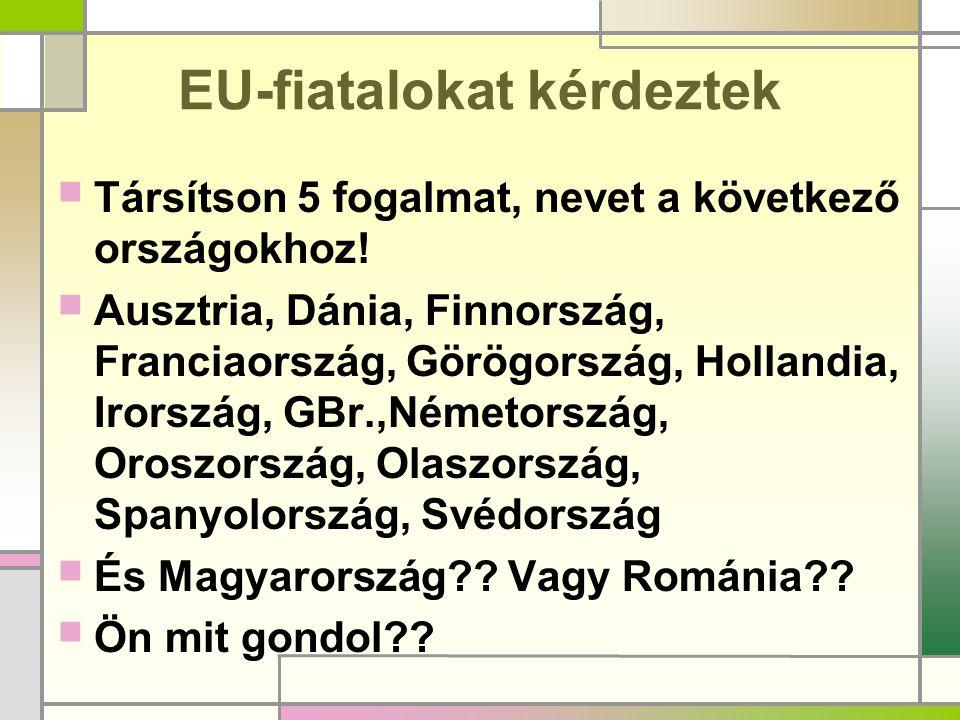 EU-fiatalokat kérdeztek