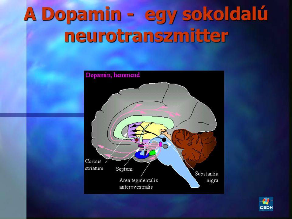 A Dopamin - egy sokoldalú neurotranszmitter