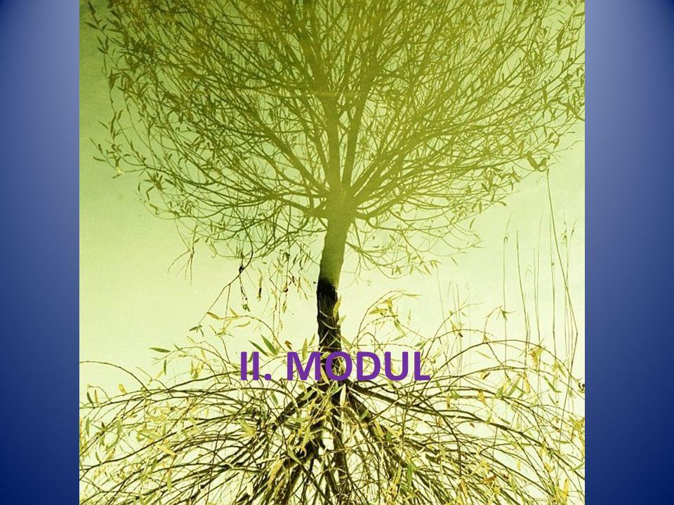 II. MODUL