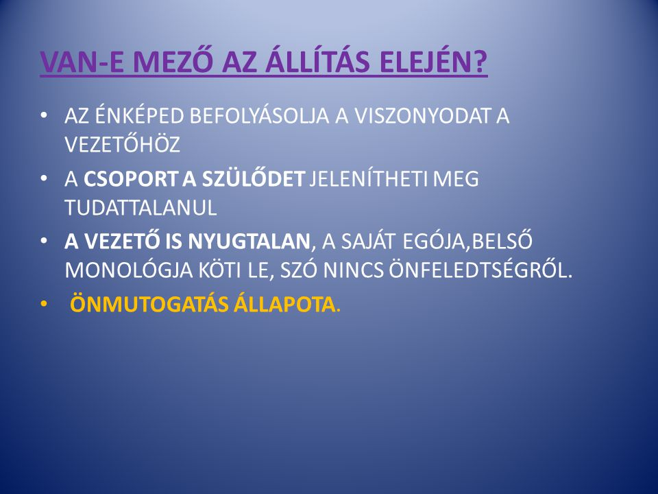 VAN-E MEZŐ AZ ÁLLÍTÁS ELEJÉN
