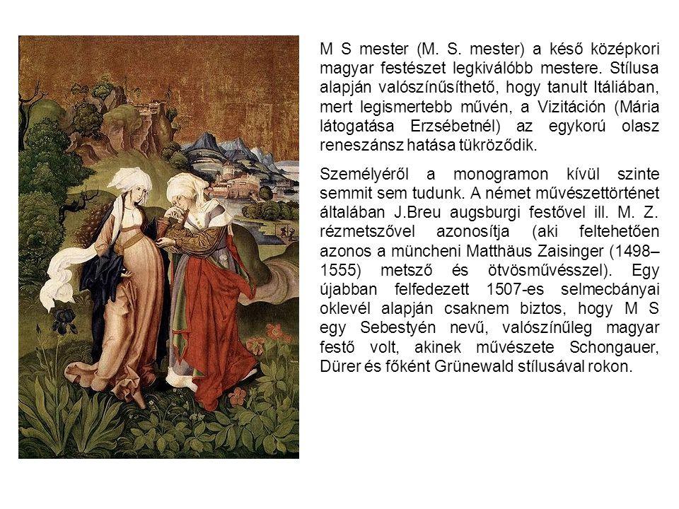 M S mester (M. S. mester) a késő középkori magyar festészet legkiválóbb mestere. Stílusa alapján valószínűsíthető, hogy tanult Itáliában, mert legismertebb művén, a Vizitáción (Mária látogatása Erzsébetnél) az egykorú olasz reneszánsz hatása tükröződik.