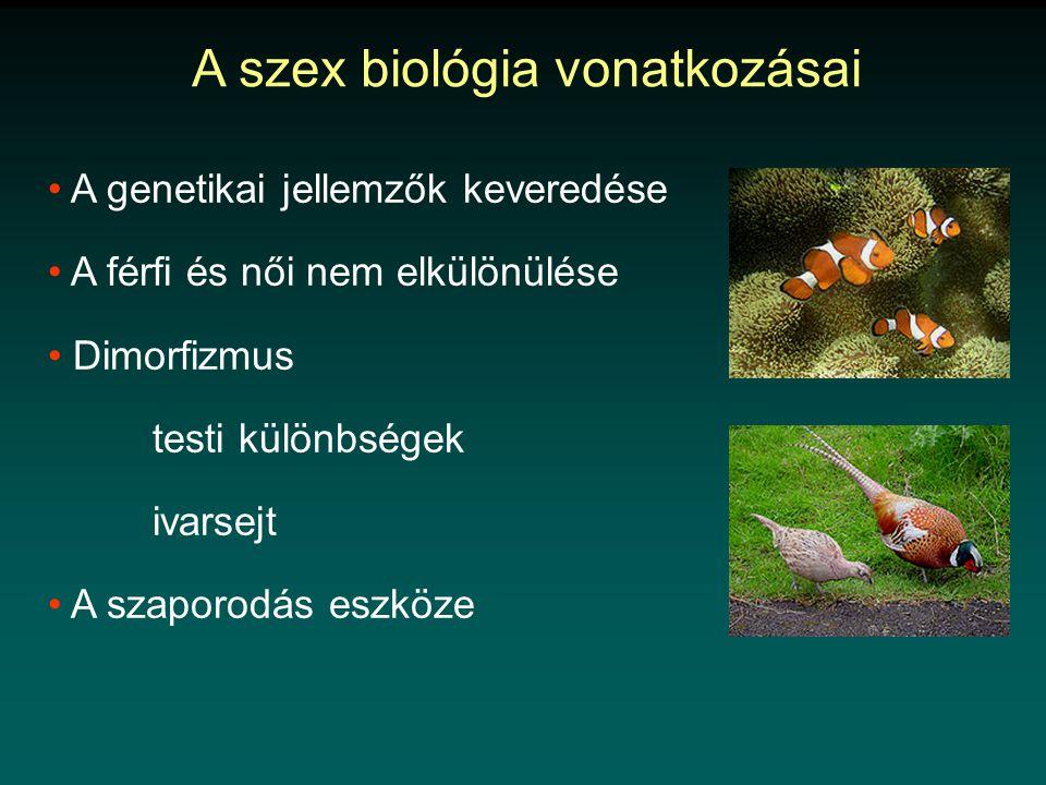A szex biológia vonatkozásai