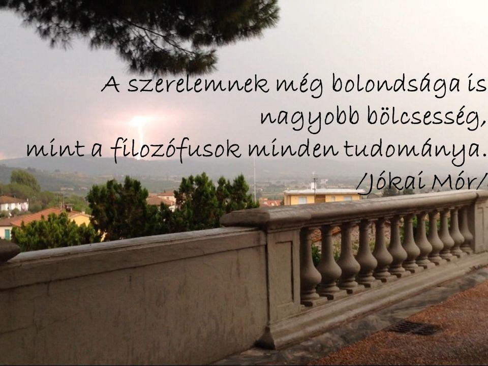 A szerelemnek még bolondsága is nagyobb bölcsesség, mint a filozófusok minden tudománya. /Jókai Mór/