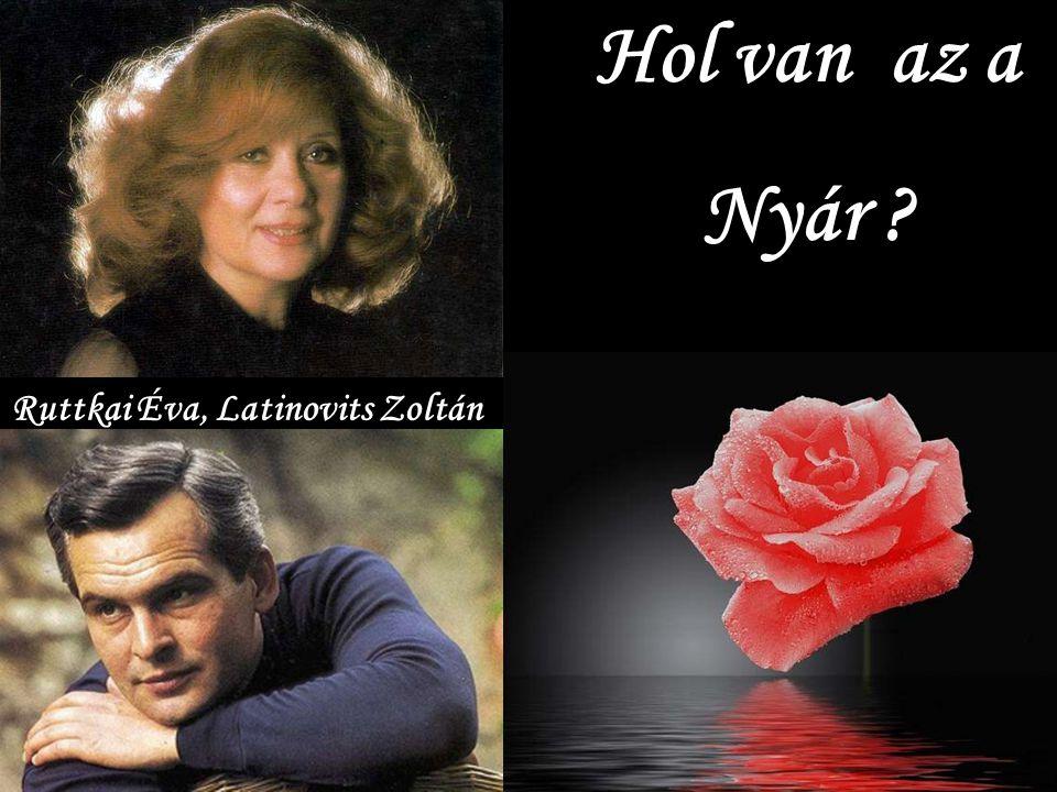 Hol van az a Nyár Ruttkai Éva, Latinovits Zoltán