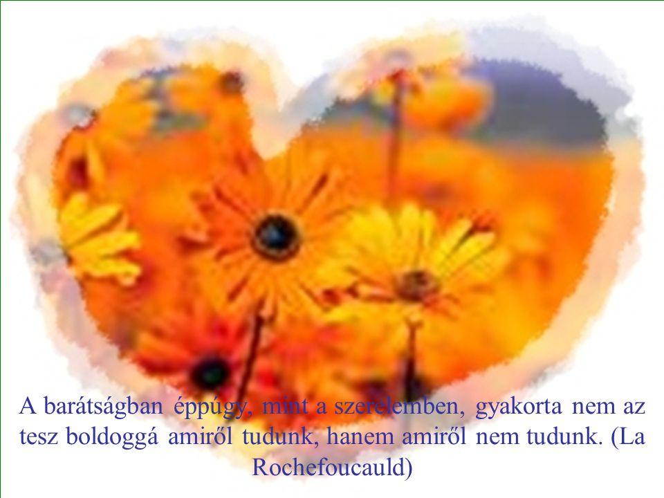 A barátságban éppúgy, mint a szerelemben, gyakorta nem az tesz boldoggá amiről tudunk, hanem amiről nem tudunk.