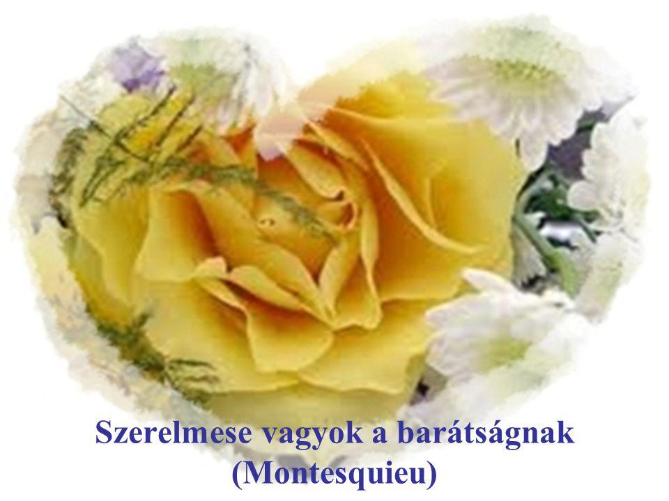 Szerelmese vagyok a barátságnak (Montesquieu)