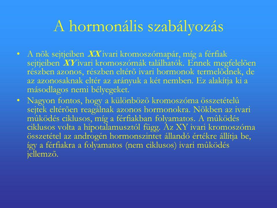 A hormonális szabályozás
