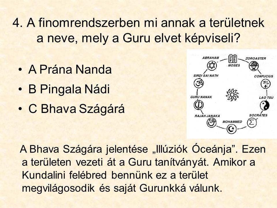 4. A finomrendszerben mi annak a területnek a neve, mely a Guru elvet képviseli