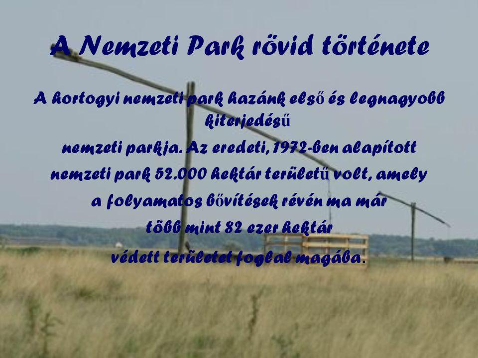A Nemzeti Park rövid története
