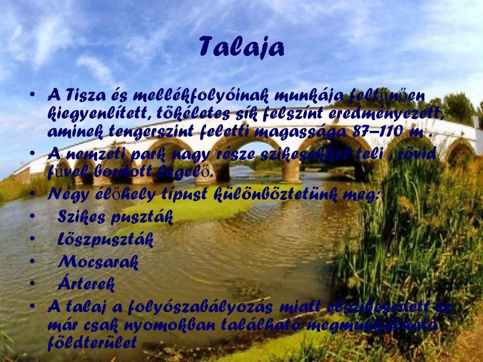 Talaja