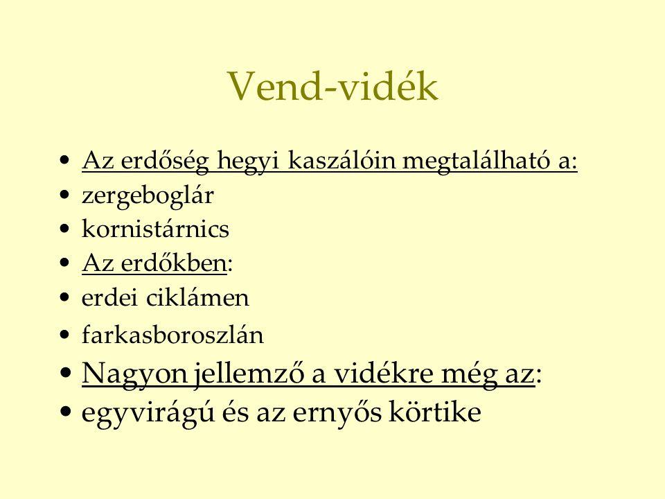 Vend-vidék Nagyon jellemző a vidékre még az: