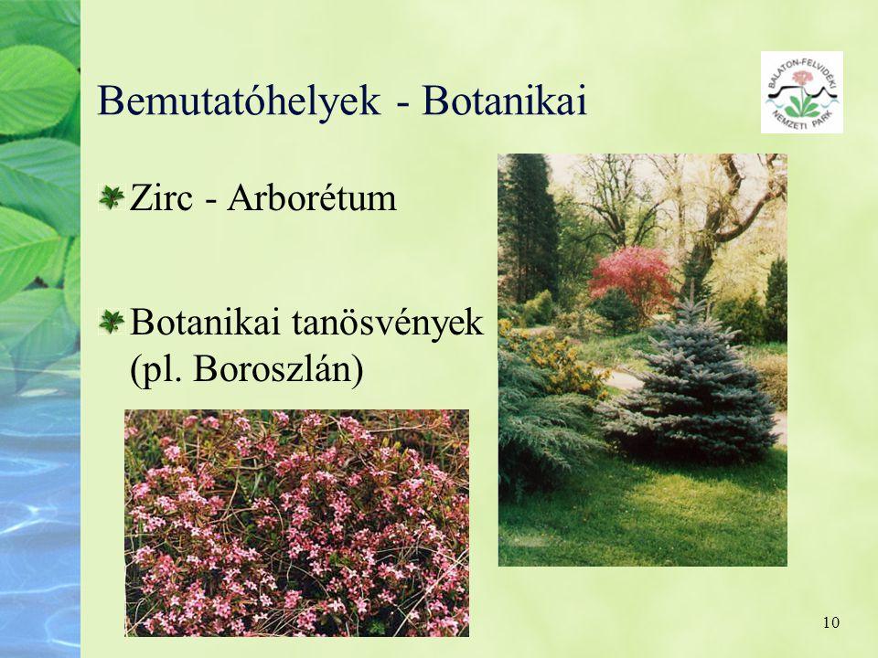 Bemutatóhelyek - Botanikai