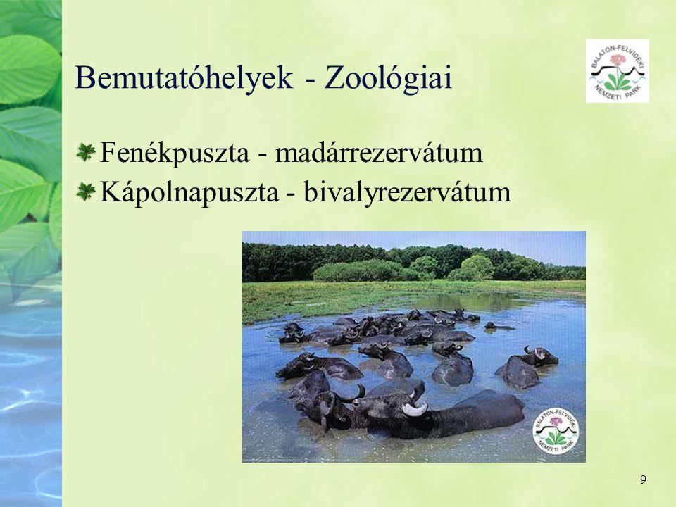 Bemutatóhelyek - Zoológiai