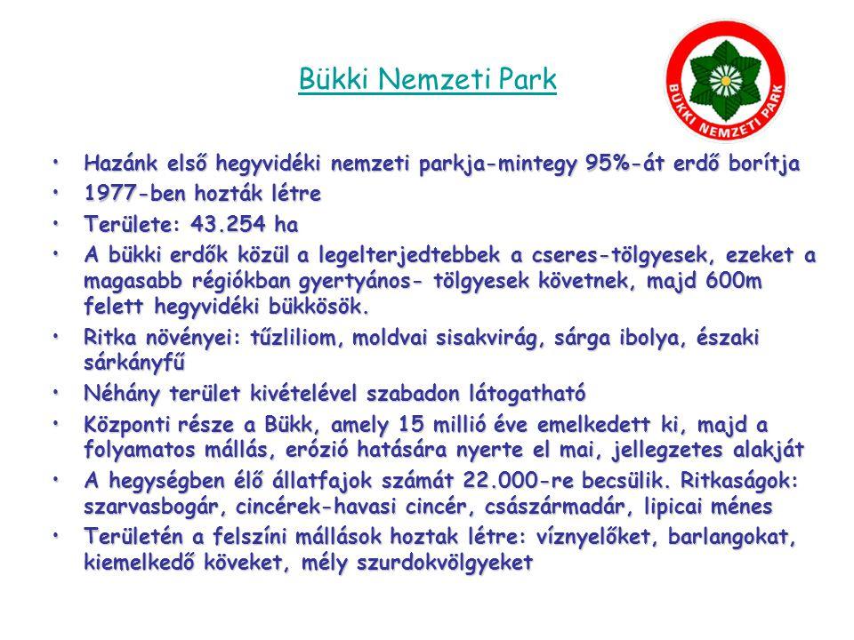 Bükki Nemzeti Park Hazánk első hegyvidéki nemzeti parkja-mintegy 95%-át erdő borítja. 1977-ben hozták létre.