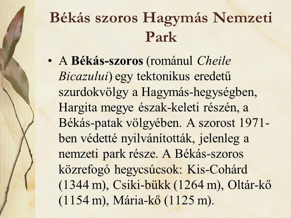 Békás szoros Hagymás Nemzeti Park