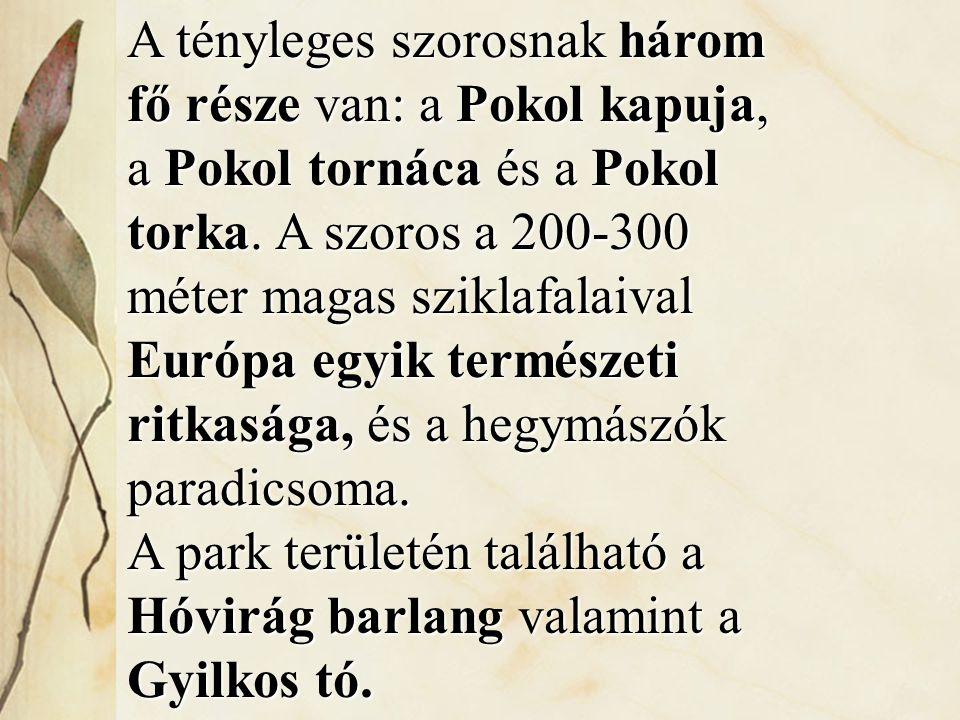 A tényleges szorosnak három fő része van: a Pokol kapuja, a Pokol tornáca és a Pokol torka. A szoros a 200-300 méter magas sziklafalaival Európa egyik természeti ritkasága, és a hegymászók paradicsoma.